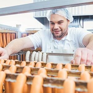 Industry report: Managing the rising costs of building and property insurance for the food and beverage industry