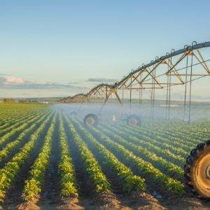 Food production businesses face rising environmental risk